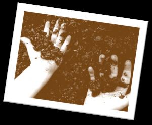Z WINE_Hands